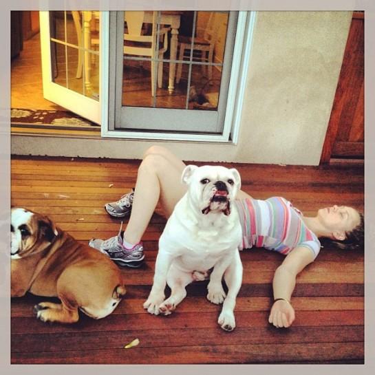 bulldogsavasana