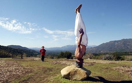 dharma-mittra-yoga